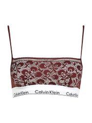 CALVIN KLEIN Bustier Modern Cotton (Phoebe/Beere) rot